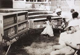 都立有三青少年文庫の頃 庭園で本を読む子どもたち