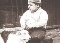 『チビッコ・ギャング ドッグ・デーズ』(1922年/アメリカ/12分)
