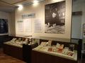 企画展示 「世界に広がるDAZAI文学―「斜陽」と「人間失格」を中心に」がスタートしました!